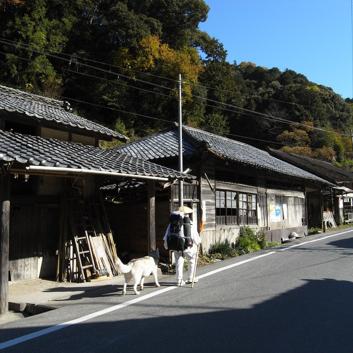 Memory of the second pilgrimage with husky HANA_c0049299_17584882.jpg