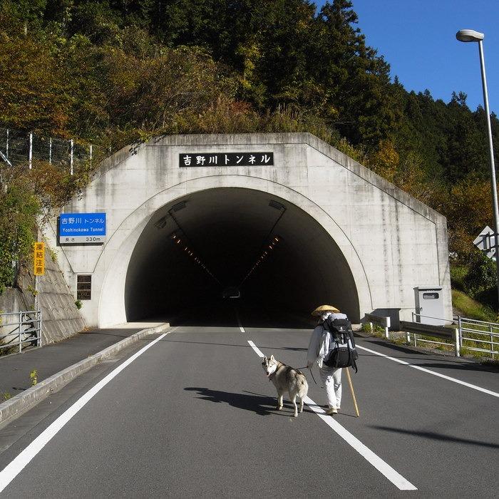 Memory of the second pilgrimage with husky HANA_c0049299_1759483.jpg