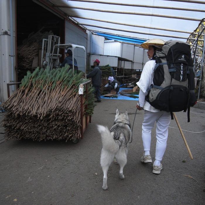 Memory of the second pilgrimage with husky HANA_c0049299_1805214.jpg