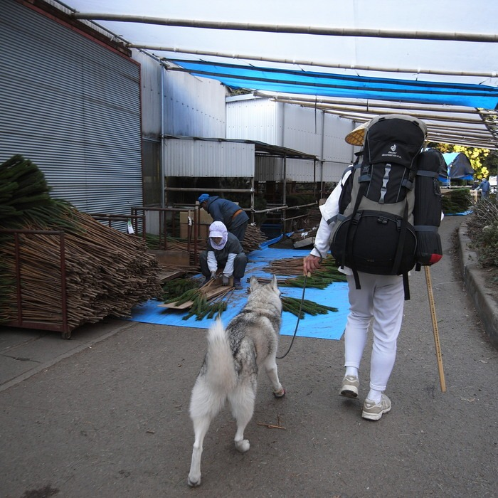 Memory of the second pilgrimage with husky HANA_c0049299_181185.jpg