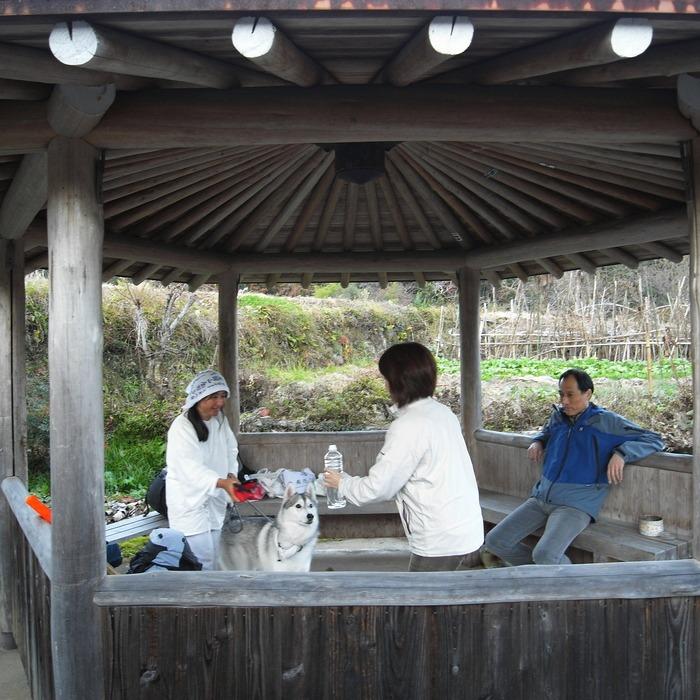 Memory of the second pilgrimage with husky HANA_c0049299_1861554.jpg