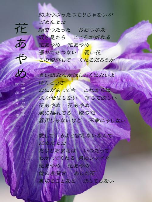 d0095910_1314423.jpg