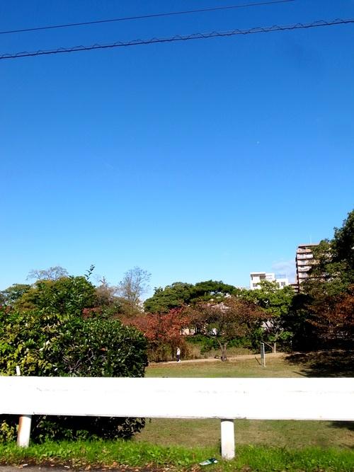 秋を通り越して冬ぅ。_f0150413_22354763.jpg