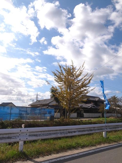 秋を通り越して冬ぅ。_f0150413_22414558.jpg