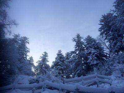 すっかり雪景色(^.^)_f0096216_18564277.jpg