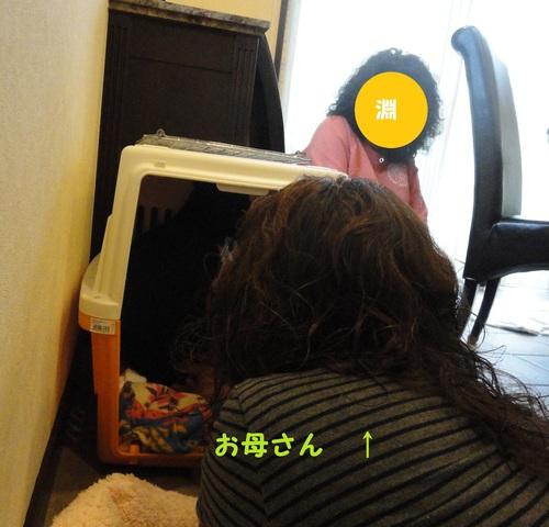 b0207320_11332211.jpg