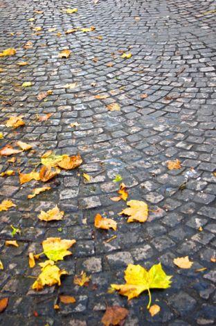 秋のパリ日記1:パサージュとマレ地区_e0114020_737042.jpg