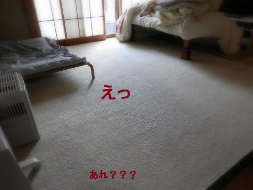 b0226221_1740568.jpg