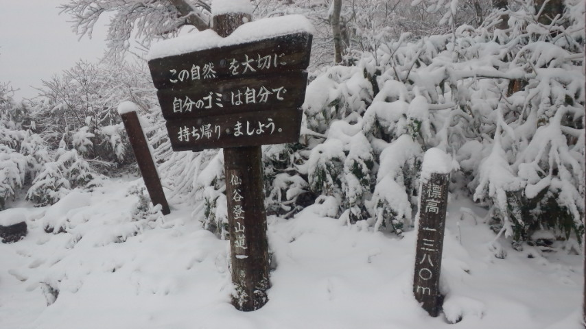 初冠雪! …やったね!_f0101226_19224629.jpg
