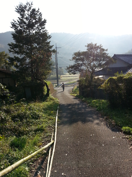岡やーまん 稲刈り_c0226146_14135357.jpg
