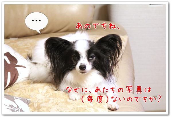 d0013149_0242087.jpg