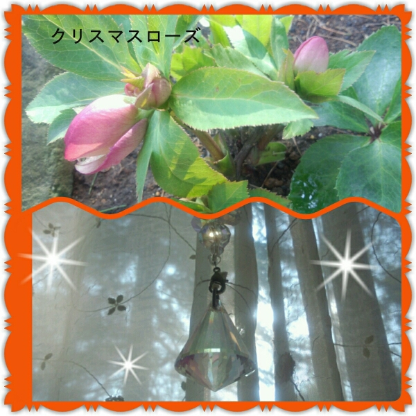 f0142953_12164121.jpg