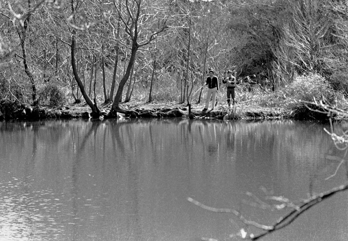 ひどい、台峯・谷戸の池が本当の蓮田になっちゃった10・26_c0014967_21421386.jpg