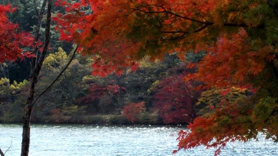 志高湖・神楽女湖に行ってきました_b0214473_2222648.jpg