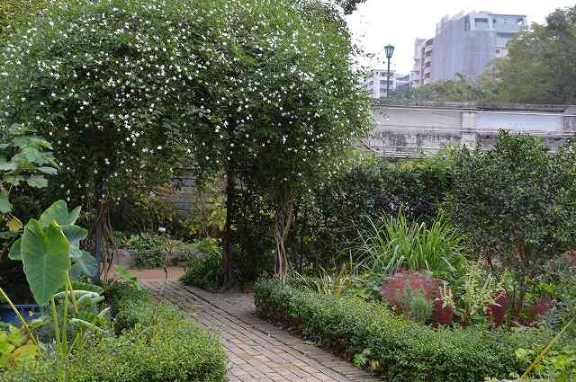 宝塚ガーデンフィールズ:最後の記録(前編)_c0124100_22103069.jpg