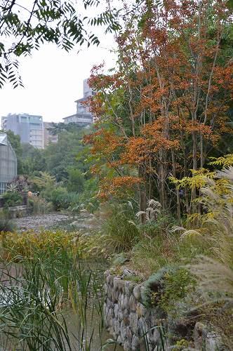 宝塚ガーデンフィールズ:最後の記録(前編)_c0124100_22112186.jpg