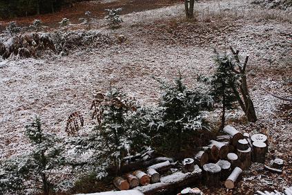 冬の跫音(あしおと)_d0184405_22191353.jpg
