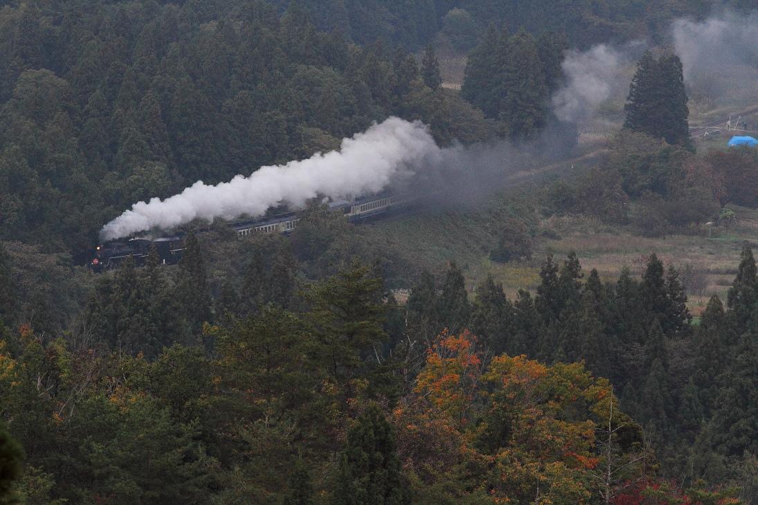 秋の磐西を門デフのC57が走っていった - 2013年秋・磐西 -  _b0190710_2316934.jpg