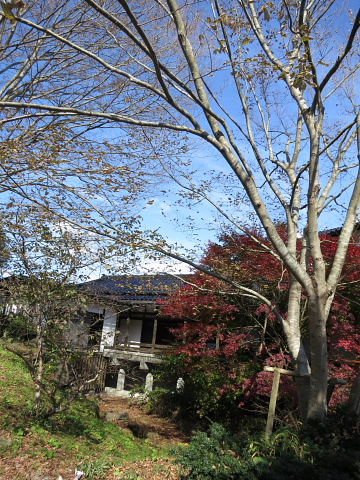 能登と横浜、研修会のハシゴ_d0046025_2354042.jpg