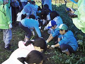 広島と福島の子供たちの収穫体験_e0175370_9234360.jpg