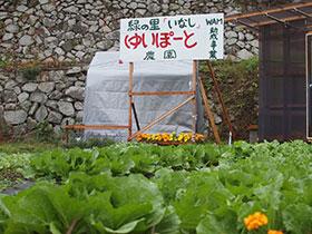 広島と福島の子供たちの収穫体験_e0175370_9234996.jpg