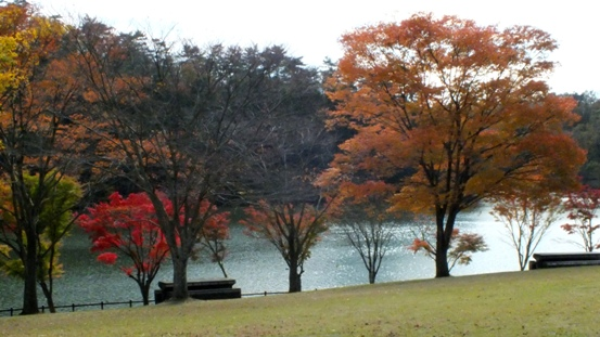 志高湖・神楽女湖に行ってきました_b0214473_1346311.jpg