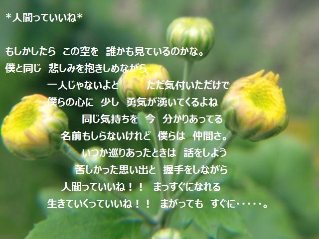 b0232891_1041939.jpg