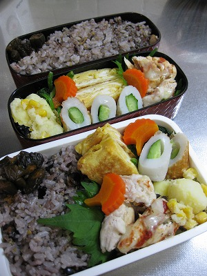 ささみの野菜ロ-ル♪、豆腐いっぱい入りハンバ-グ♪_f0116812_17501623.jpg
