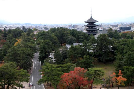 奈良公園へ_e0048413_19213946.jpg
