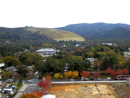 奈良公園へ_e0048413_19215028.jpg