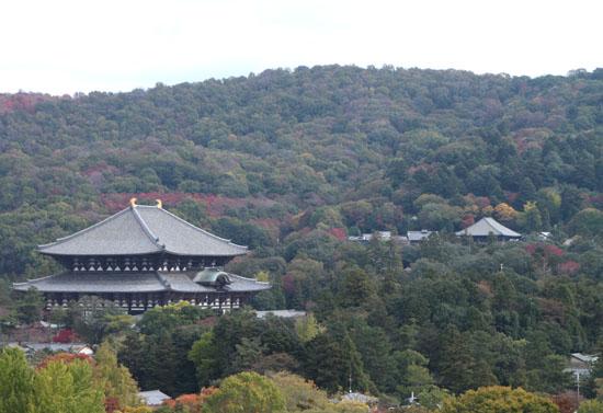 奈良公園へ_e0048413_1922071.jpg