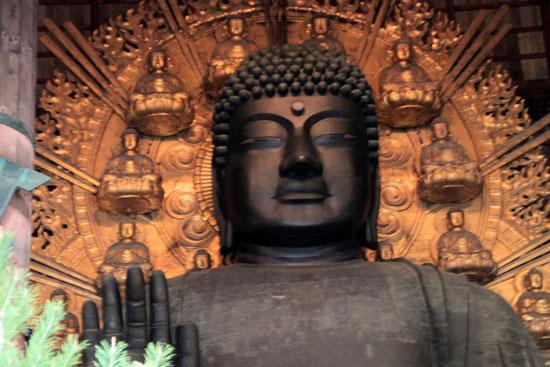 奈良公園へ_e0048413_19224511.jpg