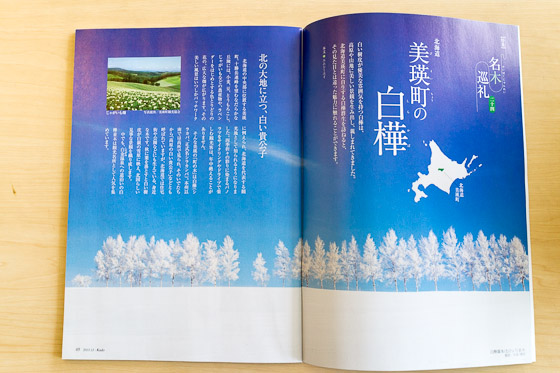 月刊「華道」_e0025030_9251677.jpg