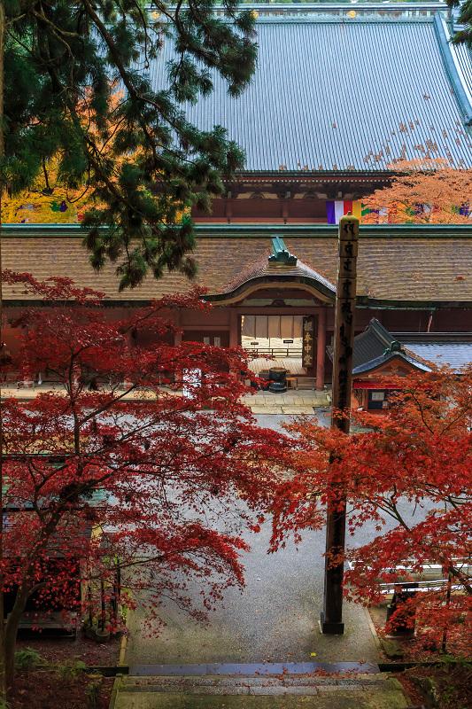 雨の紅葉めぐり(比叡山・延暦寺/東塔)_f0155048_22594482.jpg
