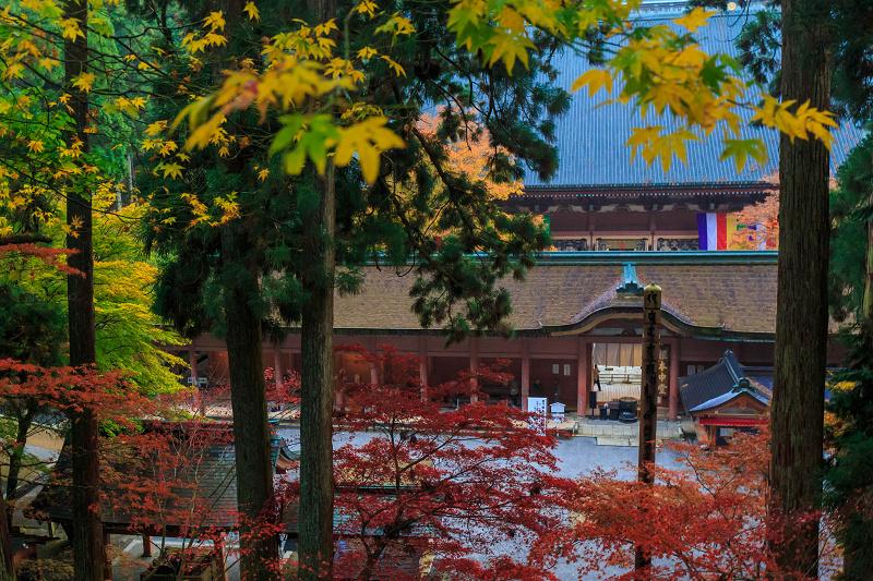 雨の紅葉めぐり(比叡山・延暦寺/東塔)_f0155048_230340.jpg