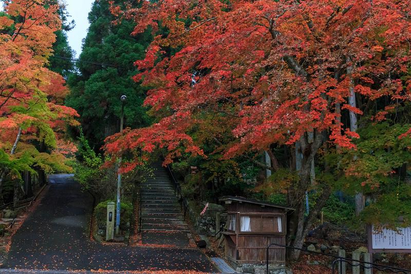 雨の紅葉めぐり(比叡山・延暦寺/東塔)_f0155048_2315216.jpg