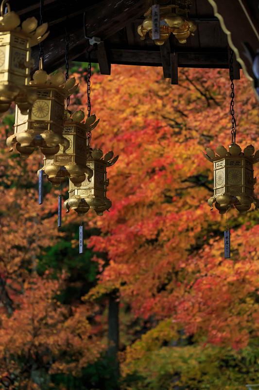 雨の紅葉めぐり(比叡山・延暦寺/東塔)_f0155048_233152.jpg