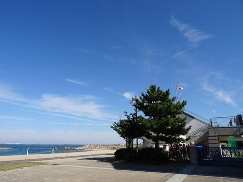 キカラスウリの保護・・・せんなん里海公園唯一の植物_c0108460_22244769.jpg