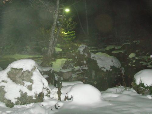 初冬の夜の陽龍庭です・・神秘的?_b0185375_17391189.jpg