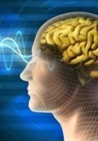 バイリンガル脳は認知症(Dementia)になりにくい_b0007805_8103472.jpg