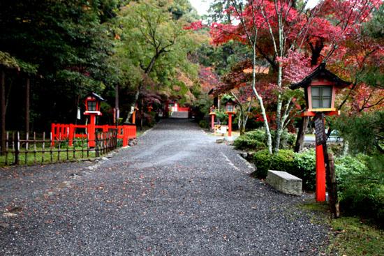 大原野神社 13紅葉だより11_e0048413_17474635.jpg