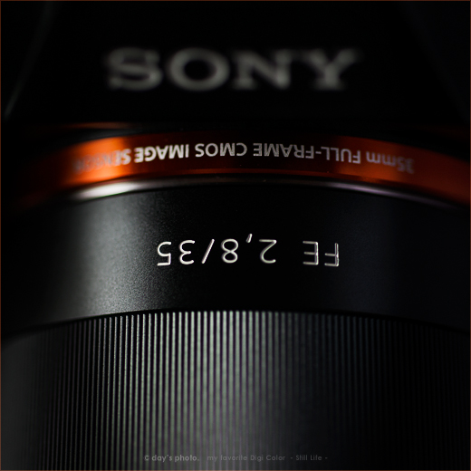 誰も作らなかったカメラ。_e0117517_1150329.jpg