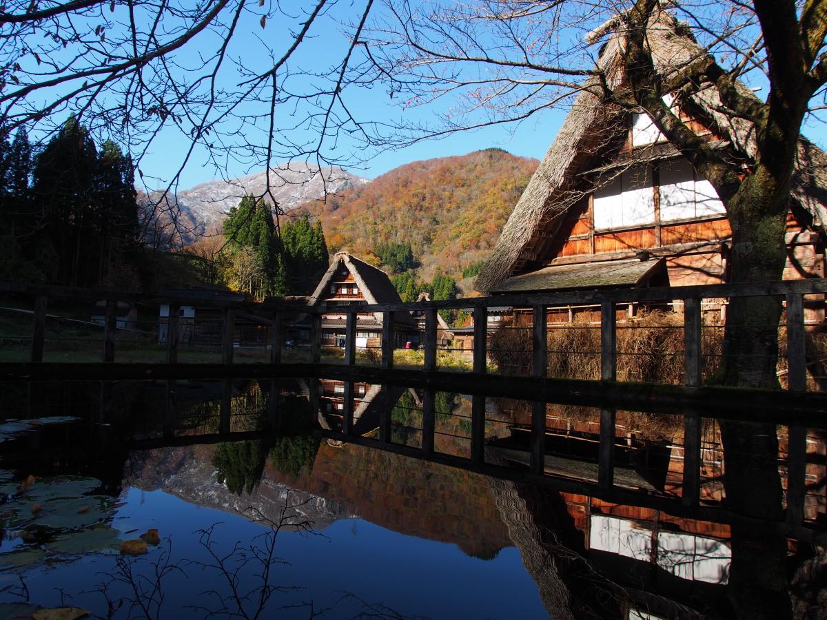 五箇山の紅葉風景 ~ハレは手刀で切る~_a0203733_1310221.jpg