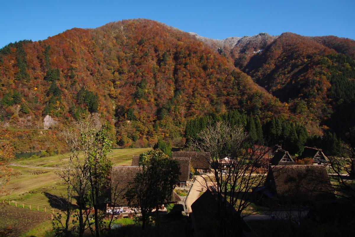 五箇山の紅葉風景 ~ハレは手刀で切る~_a0203733_1394299.jpg