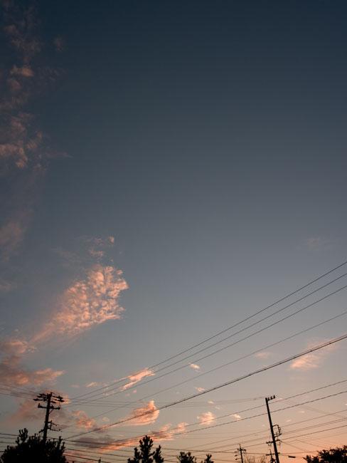 b0183748_20125207.jpg