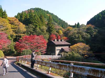 紅葉狩りシーズン到来!! 菊池渓谷の紅葉が見ごろです!_a0254656_16401952.jpg