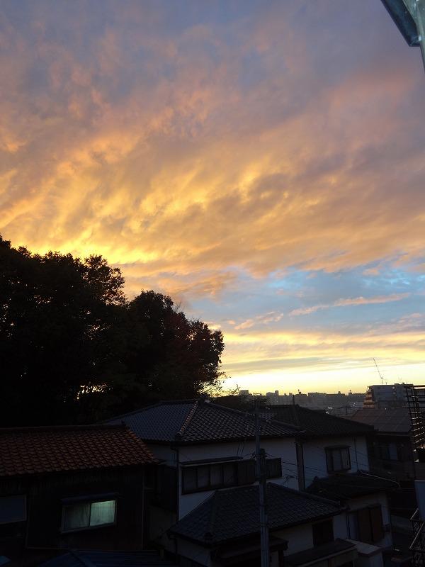 氷雨だったが夕刻に晴れた朝霞_d0061678_20491153.jpg