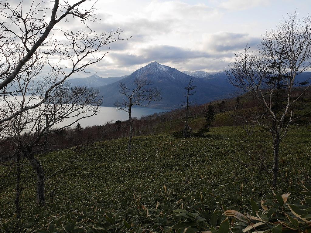 11月14日、恵庭岳と紋別岳-その2-_f0138096_14135920.jpg
