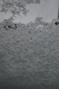 初雪の合浦公園_c0299631_23512546.jpg