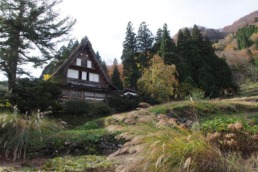 五箇山の紅葉風景 ~自虐編~_a0203733_14144661.jpg